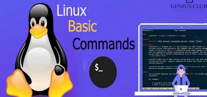 basics Linux commands for beginners